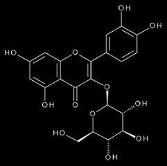 Isoquercetin